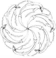 Mandala Con Simpatici Delfini Disegno Da Colorare Disegni Da