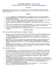 Chic Overview For Sales Resume With Additional Overview Examples