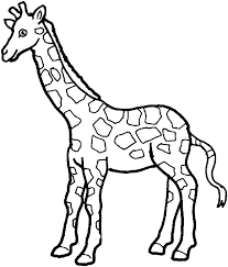Giraffe Color Page Baby Coloring Pages Free Cute Printable Full Size