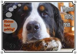 Hunde Warnschild Berner Sennenhund Mit Lustigem Spruch 1a Metallschild