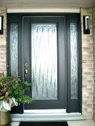 door with glass panel entry doors front gorgeous panels for above interior
