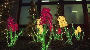 brookside gardens of lights