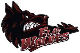 elite wolves liquipedia dota 2 wiki