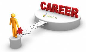 The Career Planning Process Dawn Rosenberg Mckay