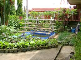 Small Picture Beautiful Vegetable Garden Small Backyard With Vegetable Garden On