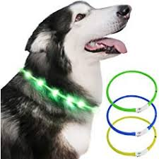 <b>Collars</b>, <b>Harnesses</b> and Leads for <b>Dogs</b> | Amazon.co.uk