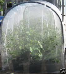 Osmocote 500g Fruit  Citrus  Trees  Shrubs Fertiliser Fruit Tree Netting Bunnings