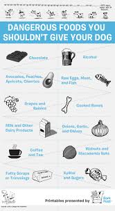 Foods Dogs Should Not Eat Chart Printable Infographic Everyday Foods That Your Dog Should