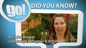 """Did You Know?"""" - Priscilla Brewer - Edible Plants - Shaw TV Nanaimo -  YouTube"""