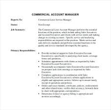 Account Manager Resume Real Estate Accounts Finance Format