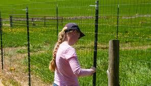 metal farm fence. Metal Farm Fence N