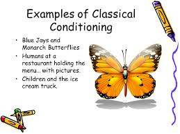 Example Of Classical Conditioning Example Of Classical Conditioning Classical Conditioning How It