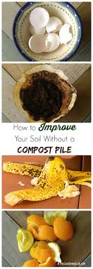 Kitchen Scrap Gardening Trench Composting With Kitchen Scraps The Gardening Cook