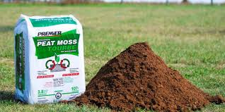 image result for peat moss