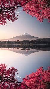 nature iphone wallpaper ...