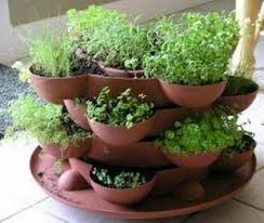 how to grow a herb garden. Herb Garden In Stacked Containers How To Grow A