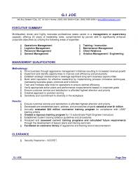 No Experience Resume Delectable Sample Resume Summaryresume Summary Examples With No Experience