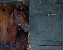 2017 Breeders Cup Charts 188 Horses Pre Entered For 2019 Breeders Cup Bloodhorse