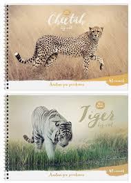 Купить <b>Альбом для рисования ArtSpace</b> Животные Wild Animal ...