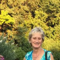 Kathy McGill - Founder/Consultant - Primae Consulting | LinkedIn