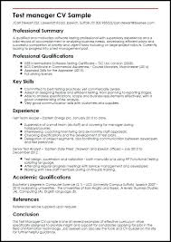 Executive Summary Resume Example Sample Manager Resume Civil Supervisor Resume Download Sample Resume