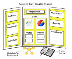 Science Fair Board Layout Magdalene Project Org