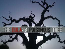The Exclusionary RuleFruit Of The Poisonous Tree In Mapp V Ohio Fruit Of Poisonous Tree Doctrine Definition