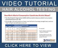 Alcohol Drug Testing Tutorial Video And Hair Abusecheck