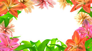 growing flowers frame 3d animation