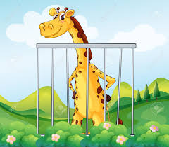 zoo animals in cages clipart.  Zoo Intended Zoo Animals In Cages Clipart I