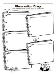 Observation Diary Investigation Graphic Organizer For The