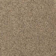 carpet 15 foot wide. carpet sample - courtlyn ii color driftwood texture 8 in. 15 foot wide