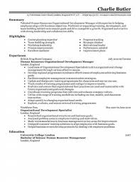 Hr Resume Examples Entry Level Free Letter Templates