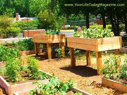 Small Picture Beautiful Elevated Raised Garden Beds Bed Ideas Instructions To