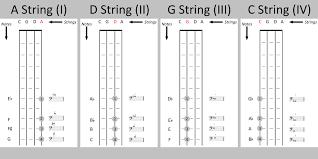 Cello Position Diagram The Cello Companion