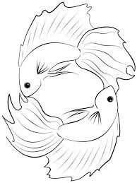 Small Picture Betta fish coloring pages Download and print Betta fish coloring