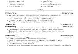 Professional Summary Resume Examples Impressive Resume Summary Of Qualifications Example Resume Summary Of