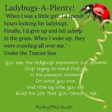 Ladybug Quotes Mesmerizing The Ladybug Quote Under The Tuscan Sun Personal Developmental
