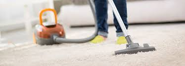 Image result for Professional Steam Cleaning canberra