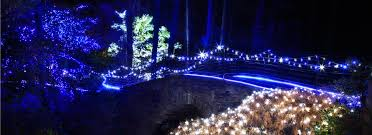 garvan gardens lights lovely or towns and garvan woodland gardens holiday lights