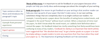essay body paragraph examples introduction example sample  sample paragraph essay body paragraph examples
