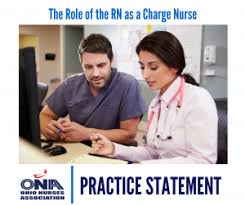 Chart Audit Nurse Jobs The Role Of The Registered Nurse As Charge Nurse Ohio
