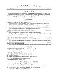 Examples Of Good Objectives For Resumes Professional Objective In ...