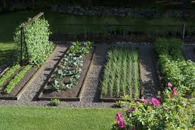 Small Picture Home Vegetable Garden Ideas Ebizby Design