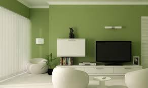 Unique Wall Colors Green Wall Living Room Photos