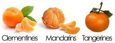 Mandarin Tangerines Clementines Mandarins And Tangerines Which Is Healthiest
