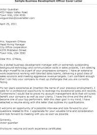Cover Letter Examples For Business Business Development Manager