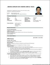 Resume Format Example Basic Resume Format Pleasant Simple Resume ...