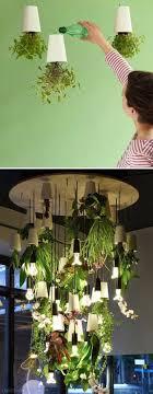 Hanging Kitchen Herb Garden Indoor Herb Garden Ideas Homesteading Indoor Gardening Tips