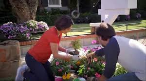 the home depot tv commercial today is the day for doing vigoro mulch ispot tv